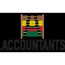 .accountants