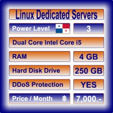 Offshore Dedicated Linux Servers Level 3