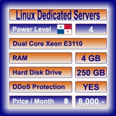 Offshore Dedicated Linux Servers Level 4
