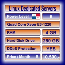 Offshore Dedicated Linux Servers Level 6
